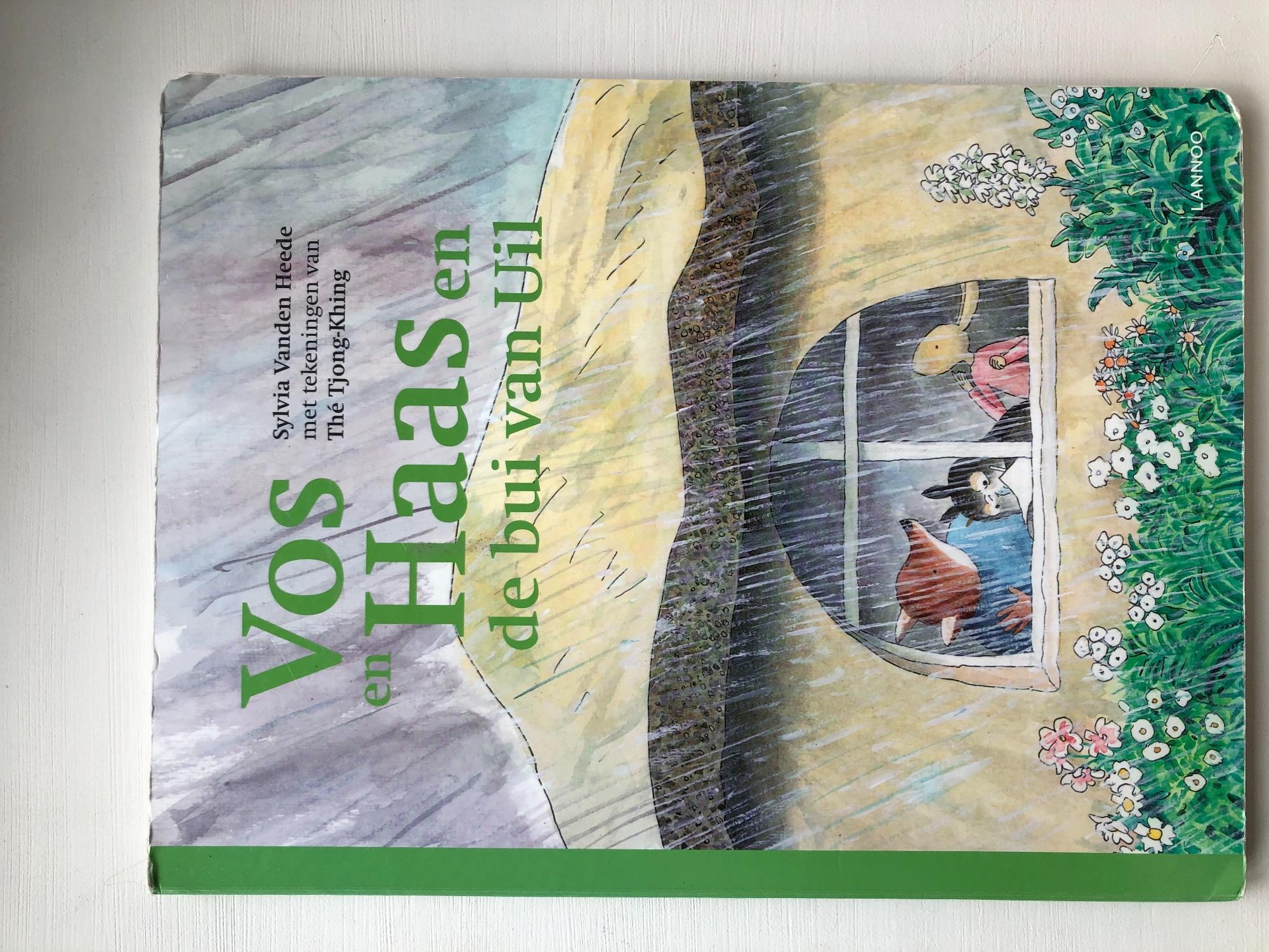 Groot boek: Vos en Haas - De bui van Uil